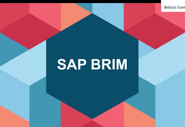 SAP BRIM